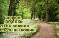 Библейская встреча по посланию апостола Павла к Римлянам (глава 8)