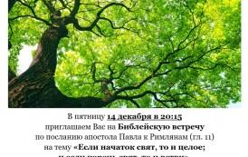Библейская встреча по посланию апостола Павла к Римлянам (глава 11)